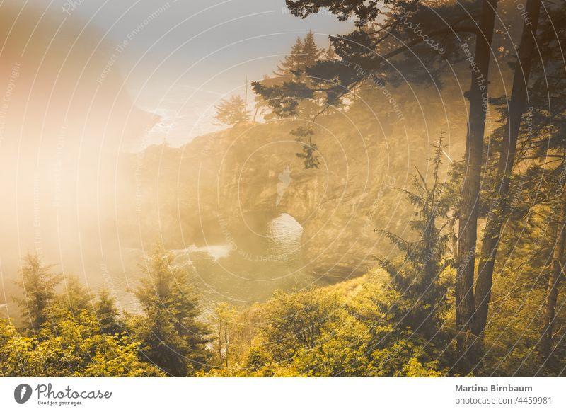Arch Rock an der Küste von Oregon an einem dunstigen Morgen Bogen Felsen Nebel Dunst staatlicher Panoramakorridor Autobahn 101 Landschaft reisen wandern Natur