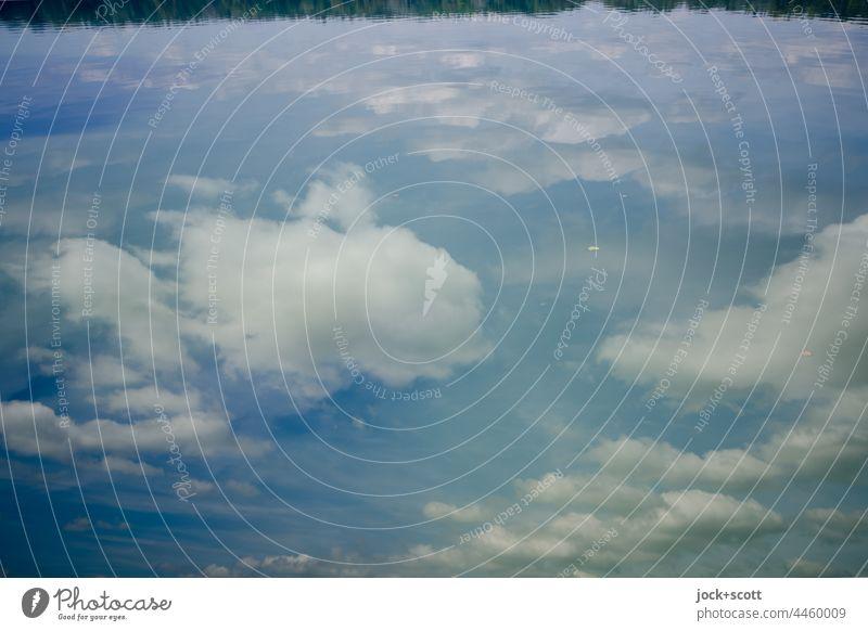 Wolken reflektiert von großen Weiher Reflexion & Spiegelung See Wasser Himmel Natur Wasserspiegelung ruhig Idylle Uferlinie Schönes Wetter Franken