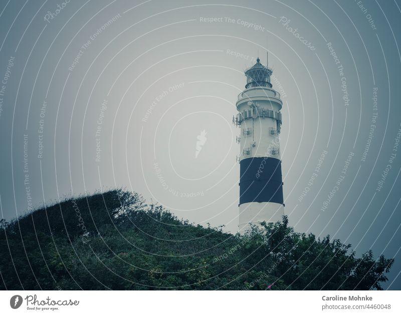 Der Leuchtturm in Kampen an einem nebligen Septembermorgen Licht schwarz weiss Küste Sylt Schifffahrt Meer Ferne Warnhinweis majestetisch Wegweiser Turm Himmel