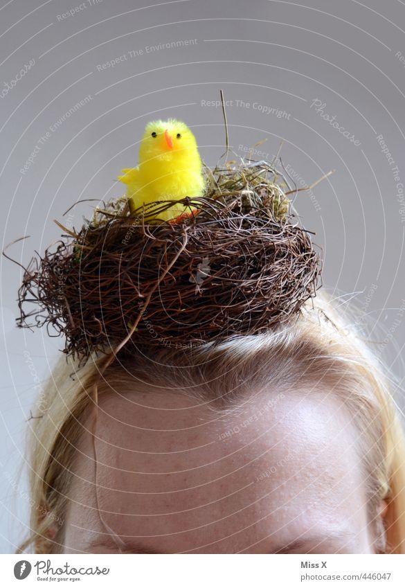 Einen Vogel haben Kopf 1 Mensch 18-30 Jahre Jugendliche Erwachsene lustig verrückt Gefühle Stimmung dumm Symbole & Metaphern Sprichwort vogel haben Unsinn