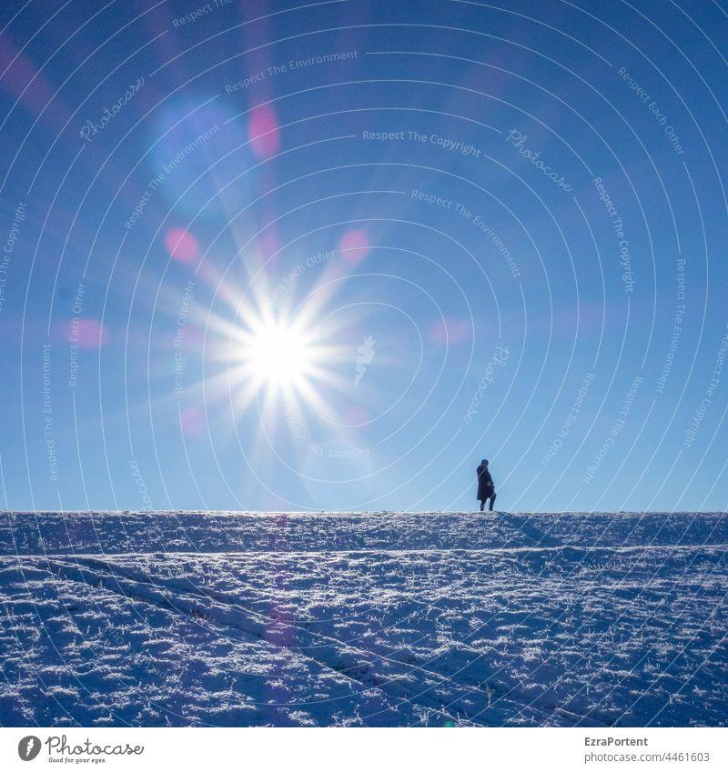 Wintersonne Schnee Mensch Sonne Rodelberg Sonnenlicht blau Spuren kalt Himmel Berge u. Gebirge Landschaft Hügel