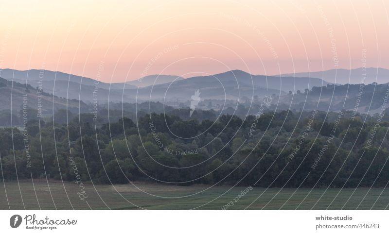 Weitblick Natur Erholung ruhig Landschaft Ferne Wald Berge u. Gebirge Leben Freiheit Feld Idylle Nebel wandern Perspektive Beginn Spaziergang