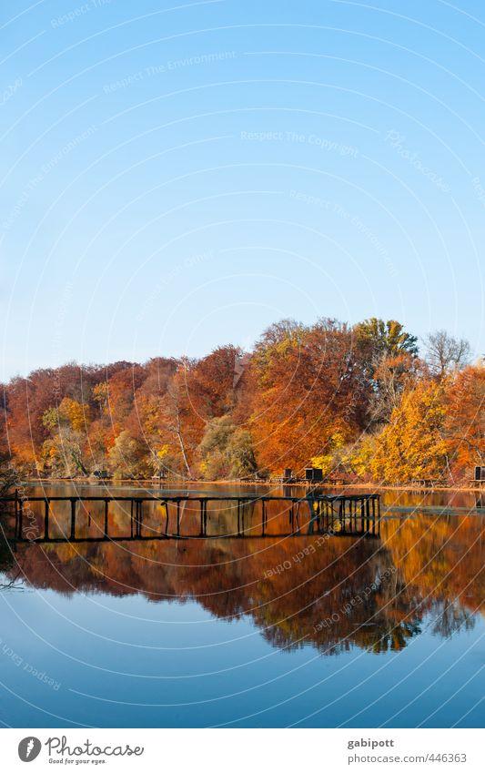 farbenfroh Himmel Natur blau Wasser Baum Erholung Landschaft Wald Umwelt Herbst Wege & Pfade Küste See natürlich braun Schönes Wetter