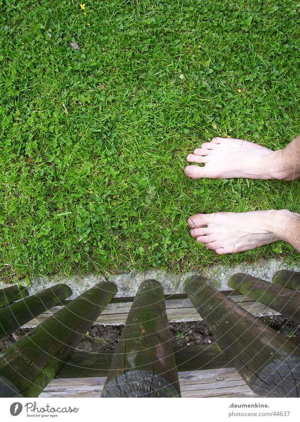 Feet meet grass Gras Wiese Zaun grün braun zögern Barfuß Mann Freizeit & Hobby Rasen Fuß Sinnesorgane Gefühle Inspiration genießen