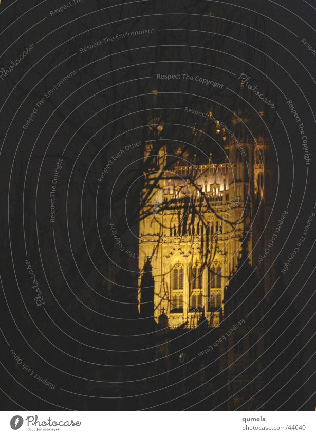 dark cathedral Baum Stadt ruhig schwarz dunkel Gebäude Religion & Glaube Beleuchtung Kunst Architektur Fassade Kirche Ast entdecken Denkmal Bauwerk