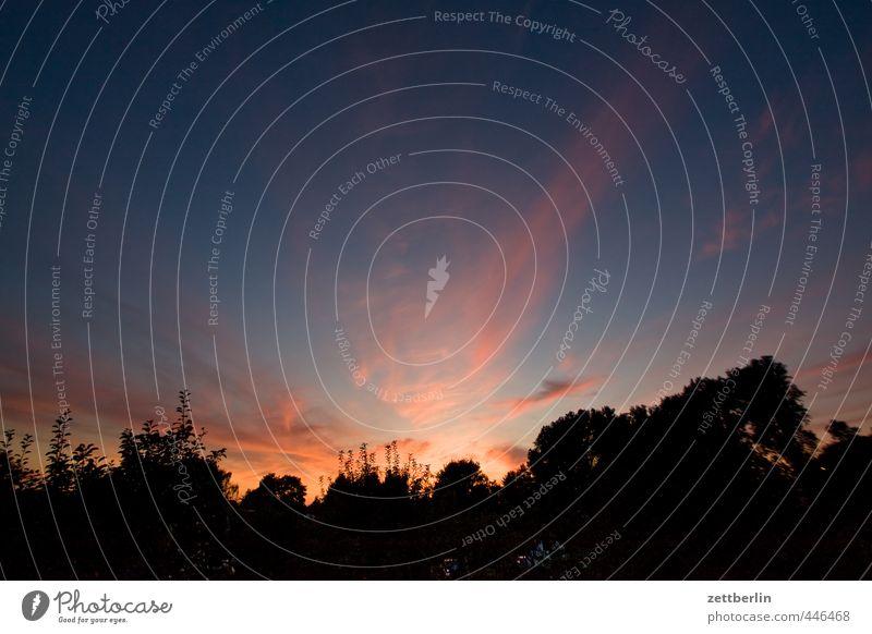 Abend Himmel Natur schön Sommer Erholung ruhig Landschaft Wolken Wald Umwelt Berlin Garten Wetter Freizeit & Hobby Zufriedenheit Klima