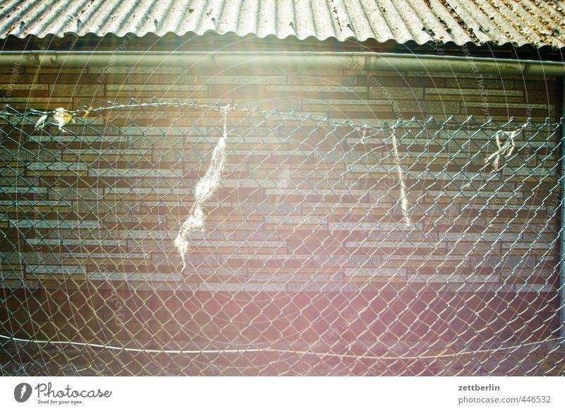 Maschendraht im Gegenlicht Stadtrand Bauwerk Gebäude Mauer Wand Garten alt Gefühle Berlin halle urban Vorstadt wallroth Maschendrahtzaun Gartenhaus Zaun Dach
