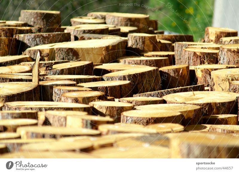 Nix Baum Abholzung Waldsterben Holz