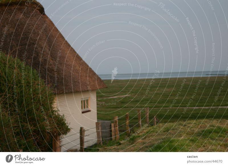 Das Haus am Meer Natur Wasser See Gebäude Landschaft Nordsee