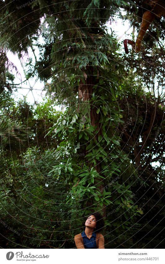 Urwald Mensch Natur Jugendliche Ferien & Urlaub & Reisen grün Baum Erholung ruhig Erwachsene Umwelt 18-30 Jahre feminin träumen Idylle Zufriedenheit Klima