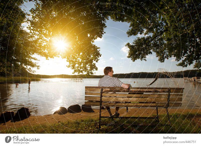 fischers fritze Mensch maskulin Mann Erwachsene 1 45-60 Jahre Umwelt Natur Landschaft Wasser Sonne Sonnenlicht Sommer Schönes Wetter Baum Blatt Wiese Seeufer