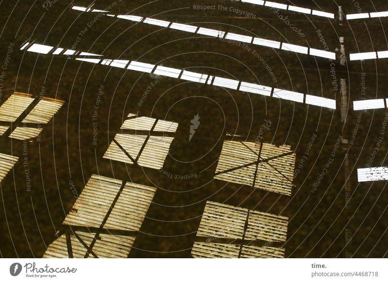 Hallendach reflexion spiegelung transparent tageslicht verstrebungen moos Dachluke träger dachträger