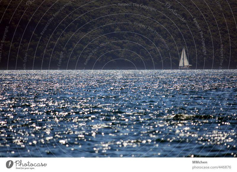 So weit der Wind uns treibt Ferien & Urlaub & Reisen blau Wasser Sommer Meer Ferne Wald Küste Freiheit Wasserfahrzeug Wetter Freizeit & Hobby Wind Lifestyle Tourismus Insel