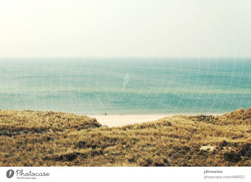 strand Ferien & Urlaub & Reisen Ferne Freiheit Sommer Strand Meer Umwelt Natur Landschaft Pflanze Sand Wasser Himmel Wolkenloser Himmel Horizont Schönes Wetter