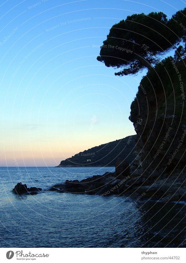 Bucht bei Dämmerung Baum Meer Felsen Insel Italien Bucht Elba