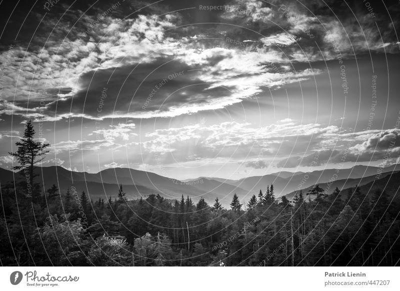 Nothing Else Matters Himmel Natur Ferien & Urlaub & Reisen Sonne Baum Erholung Landschaft Wolken Umwelt Berge u. Gebirge Senior träumen Stimmung Wetter