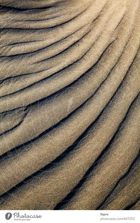 abstrakte Textur eines trockenen Sandes und des Strandes Ferien & Urlaub & Reisen Tourismus Ausflug Sommer Insel Natur Felsen Küste Fluss Stein dreckig braun