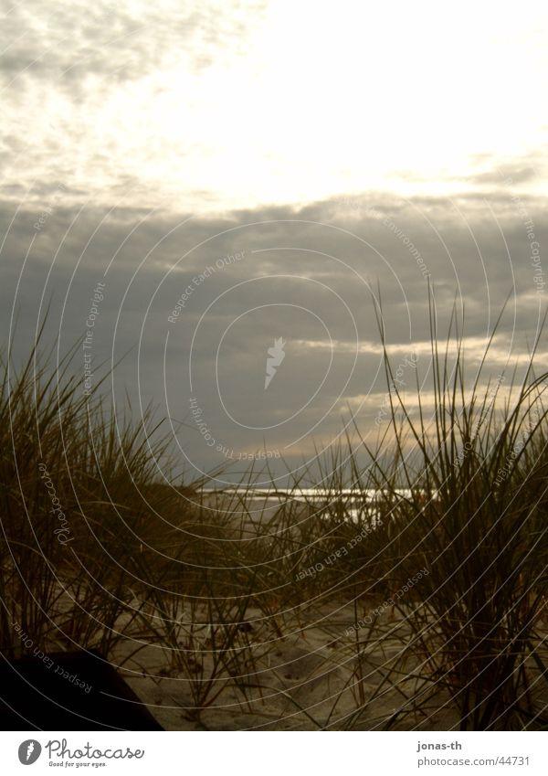 Sonnenuntergang Natur Wasser Meer Strand Wolken Landschaft Romantik Schleswig-Holstein
