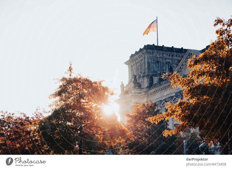 Reichstag am Morgen im Herbst IV Berlin-Mitte Sandstein Beton Zentralperspektive abstrakt Muster Strukturen & Formen Schönes Wetter Urbanisierung trendy