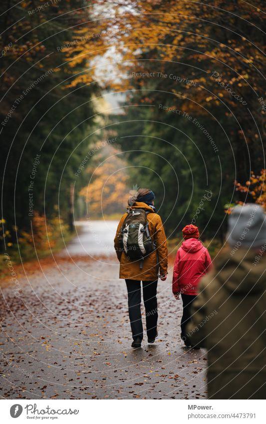 herbstwanderung im wald Herbst wandern Kindererziehung Familie & Verwandtschaft Zusammensein Zusammenhalt draußen unterwegs Wald Herbstlaub Herbstfärbung