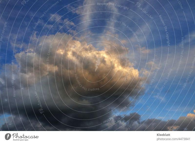 Inneres Leuchten - Abendliche Regenwolke die von der Sonne ihre letzten Strahlen erhält. Regenwolken Himmel Farbfoto Außenaufnahme Textfreiraum oben Klima Natur