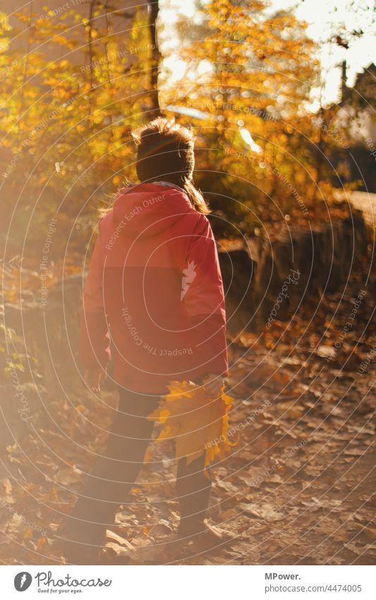 herbstspaziergang Herbst Wandern Kind Laub herbstlich Sonnenlicht lens flair Herbstlaub Natur Herbstfärbung Spaziergang Herbststimmung draußen draußensein