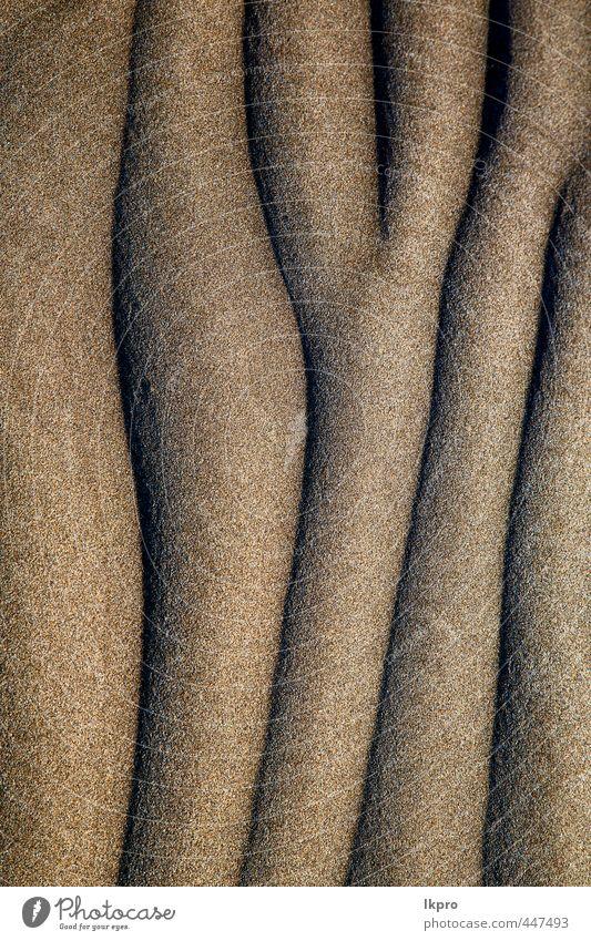trockener sand und der strand lanzarote spanien Ferien & Urlaub & Reisen Tourismus Ausflug Sommer Strand Insel Natur Sand Felsen Küste Fluss Stein dreckig braun