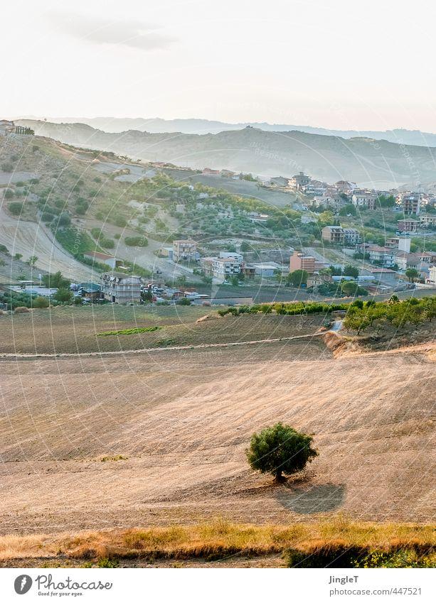 be good Himmel Natur Ferien & Urlaub & Reisen grün Pflanze Sommer Baum rot Erholung Landschaft Umwelt Wärme Leben Freiheit braun Feld