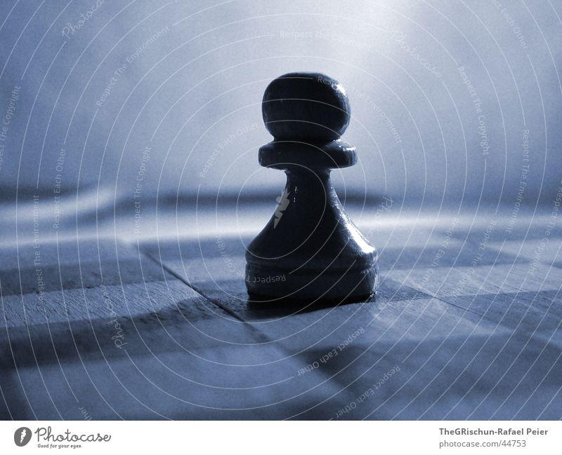 Schach Stil Spielen Mathematik Denksportaufgabe Schweiß Feld 64 schwarz Gegner Makroaufnahme Nahaufnahme Schachbrett blau Schatten Reinigen Konzentration Denken