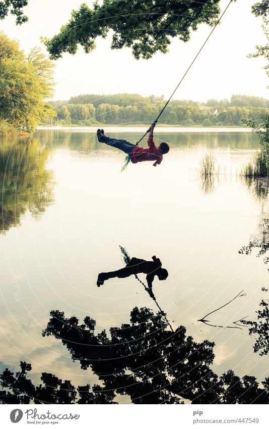 swing low Mensch Junge Junger Mann Jugendliche Kindheit Körper 1 Umwelt Natur Wasser Sommer Schönes Wetter Baum Blatt Baumkrone Seeufer schaukeln frei Freude