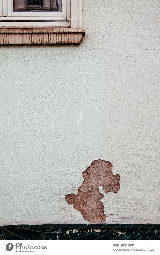 abgeblätterter Putz an einer Hauswand, der aussieht wie ein Hund Putzfassade Fassade Fassaden Pudel Wand Wandel & Veränderung alt Altbau Mauer Außenaufnahme