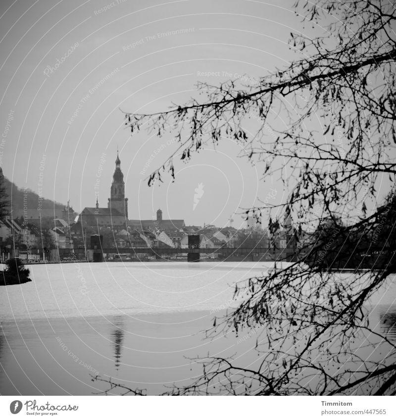 Spiegelungen | Hier und da. Umwelt Wasser Himmel Herbst Baum Fluss Neckar Heidelberg Stadt Kirche Wehrsteg ästhetisch einfach grau schwarz Gefühle ruhig Brücke