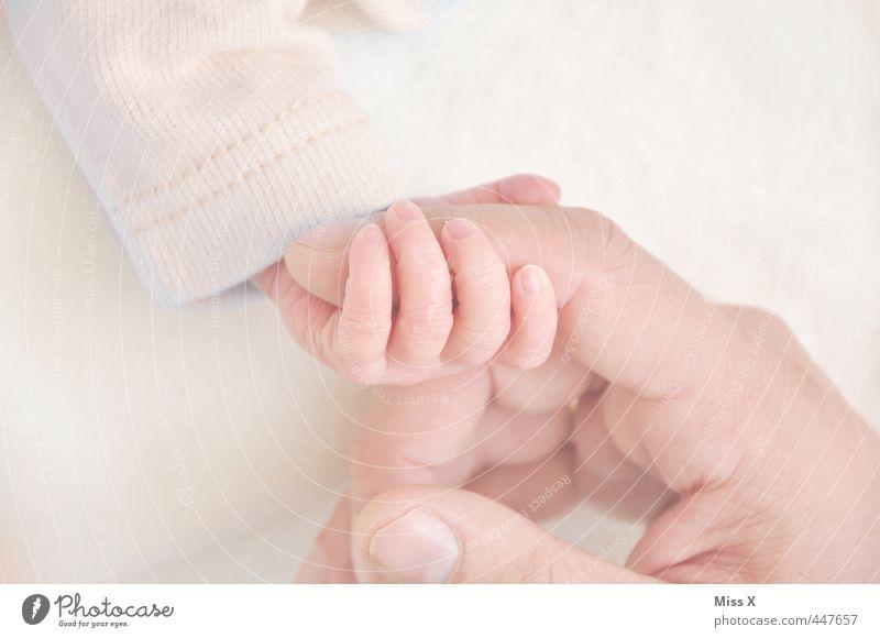 Fingerchen Mensch Hand Erwachsene Liebe Leben Gefühle klein Glück Freundschaft Stimmung Kindheit Baby niedlich Warmherzigkeit Schutz
