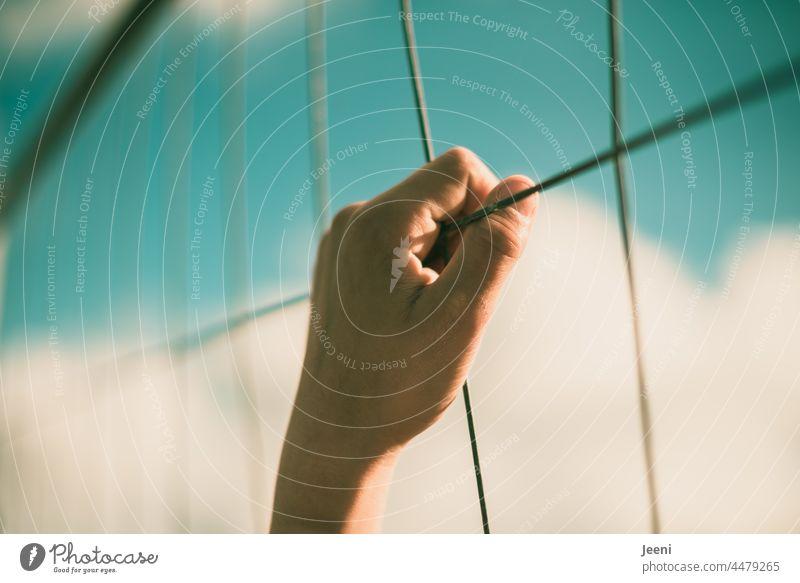 Sehnsucht nach Freiheit Hand Zaun festhalten hoch Himmel Wolken blau Sommer Schönes Wetter Finger Arm festhaltend Sonne Sonnenlicht Luft Mensch ein 1