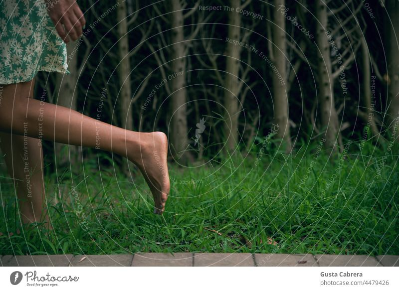 Beine, die auf dem Gras laufen, mit Bäumen im Hintergrund. Barfuß treten Fuß grün Außenaufnahme Farbfoto konzeptionell Zehen Erholung
