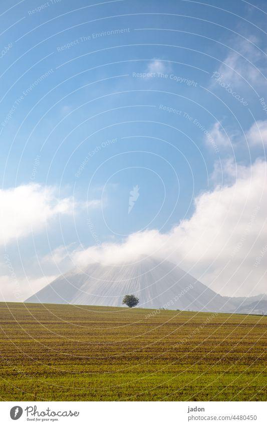 ein baum vor dem kahlen berg. Baum Berge u. Gebirge Bergbau Halde Wiese Landschaft Natur Wolken Menschenleer Gras grün blau Umwelt Hügel Himmel Grünfläche