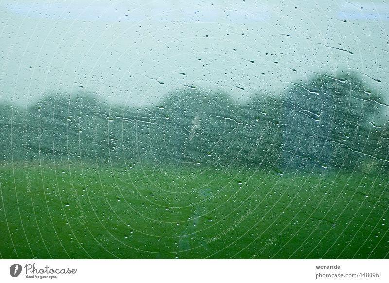 Reise durch Regen Umwelt Landschaft Wasser Wassertropfen Himmel Herbst Wetter schlechtes Wetter Wind Baum Gras Fenster Personenverkehr Bahnfahren