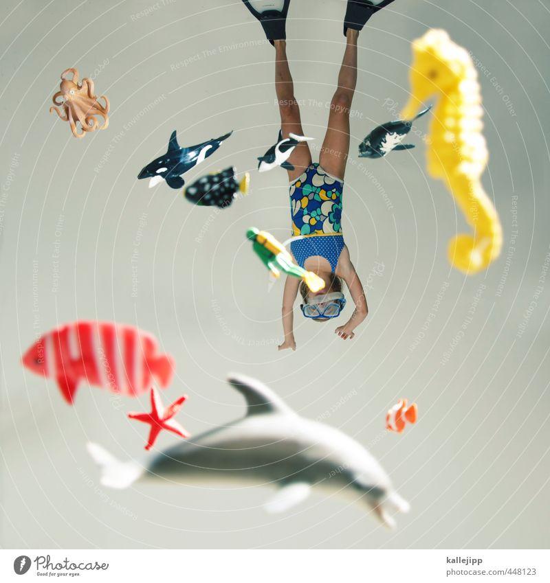 findet nemo Mensch feminin 1 8-13 Jahre Kind Kindheit Umwelt Natur Wasser Riff Tier Fisch Haifisch Schwimmen & Baden tauchen Taucherbrille Delphine Seepferdchen