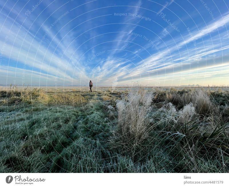 UT Teufelsmoor l Frau im Moor Frost Landschaft Natur Sonnenaufgang Farbfoto Sonnenlicht Eis Morgen kalt Mensch Himmel weite