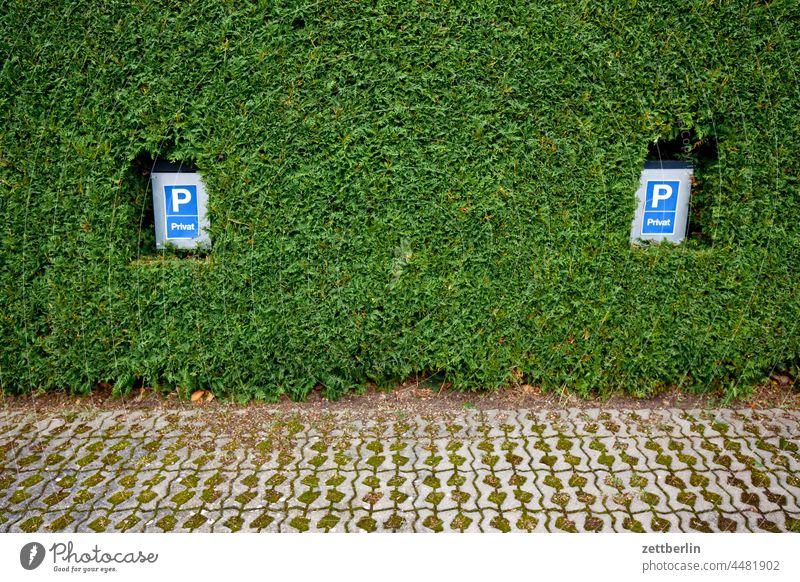 Parkplatz (privat) parken parkplatz schild verkehrsschild parkplatzschild privileg reserviert stellplatz auto kfz hecke nachbarschaft sichtschutz versiegelung