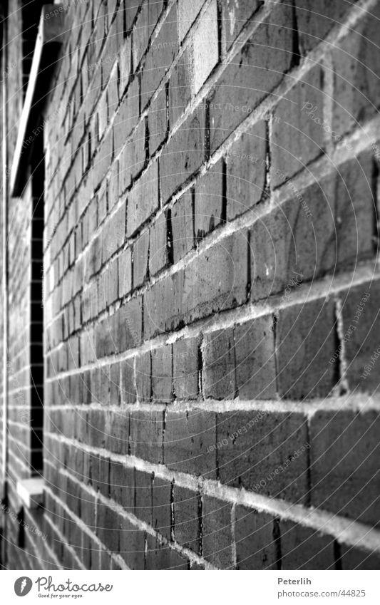 Die Mauer weiß schwarz Wand Fenster Architektur Studium Backstein Münster Fluchtpunkt