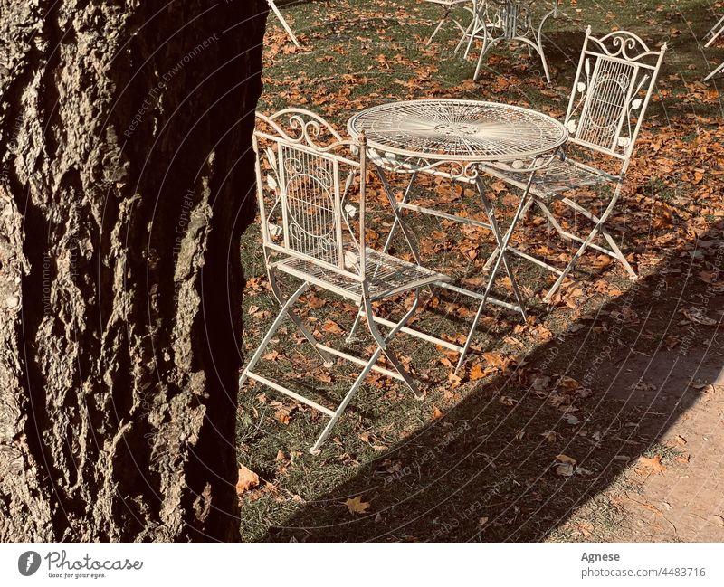 Esstisch und Stühle für zwei Personen in Herbstlaub. Herbstfärbung Herbstwetter Herbststimmung Herbstlicht Herbstgefühl herbstlich Herbstfarben Termin & Datum