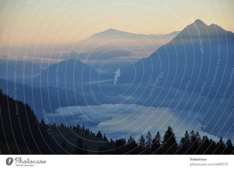 Morgennebel in den Bergen Tourismus Ausflug Ferne Freiheit Berge u. Gebirge Klettern Bergsteigen Natur Landschaft Sonnenaufgang Sonnenuntergang Wetter Nebel