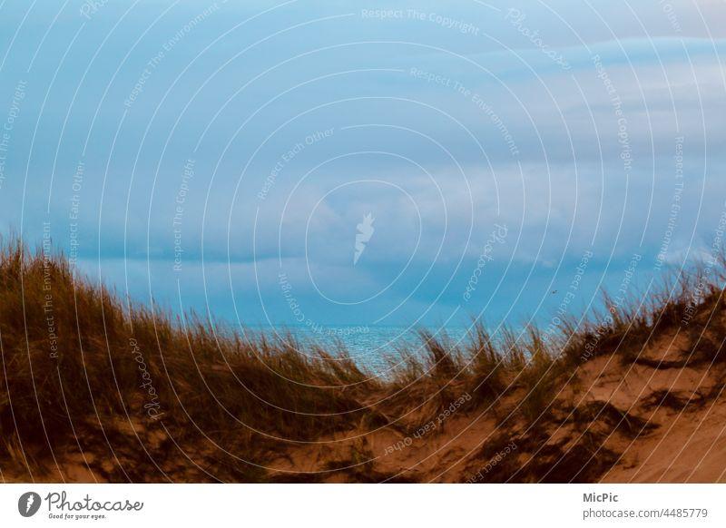 Dünenblick aufs Meer Aussicht meer wasser Horizont Nordsee Licht farbig natur Sand strand ausblick aufs meer blickend Strand Küste Wasser Natur Himmel
