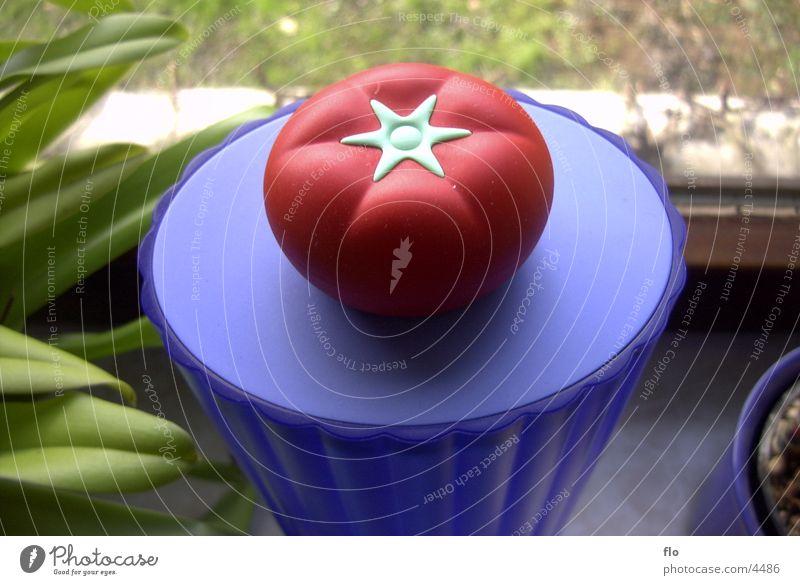 Tomate Blume Fototechnik Statue