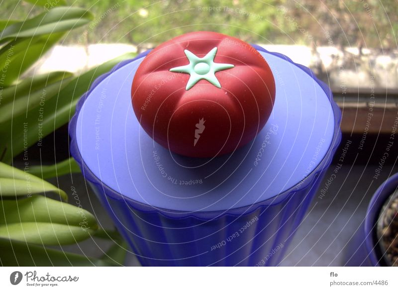 Tomate Blume Statue Fototechnik