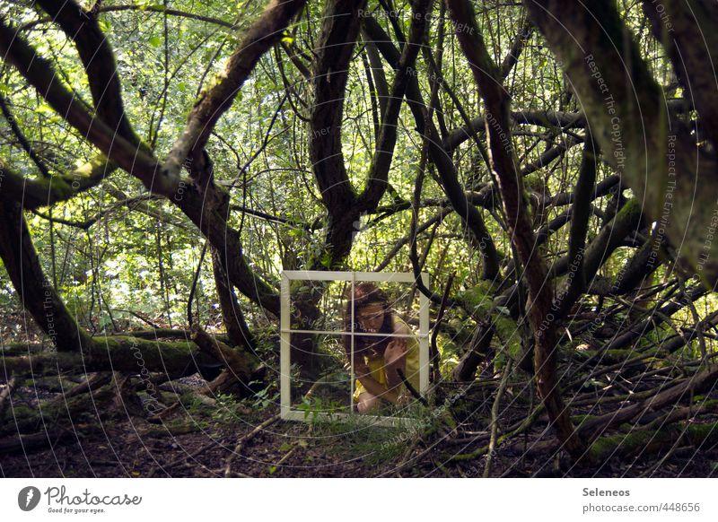 Be careful what you wish for Ausflug Sommer Mensch feminin Frau Erwachsene 1 Umwelt Natur Landschaft Schönes Wetter Pflanze Baum Sträucher Moos Wald träumen