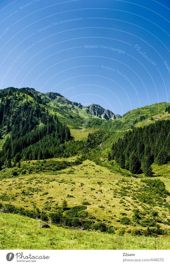 Wildschönau Ferien & Urlaub & Reisen Ausflug Sommerurlaub Berge u. Gebirge wandern Natur Landschaft Wolkenloser Himmel Schönes Wetter Wiese Wald Alpen Gipfel