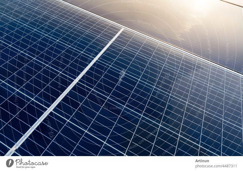 Sonnenkollektoren oder Photovoltaikmodule. Sonnenenergie für grüne Energie. Nachhaltige Ressourcen. Erneuerbare Energie. Saubere Technologie. Solarzellenpaneele nutzen das Sonnenlicht als Quelle für die Stromerzeugung.