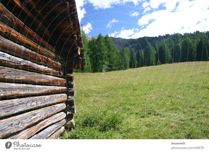 Almwirtschaft II Sommer Ferien & Urlaub & Reisen Erholung Wiese Berge u. Gebirge Holz Mauer Architektur Alpen verfallen Hütte Scheune Dolomiten Sommertag